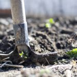 Een nieuwe hobby: werken in de tuin
